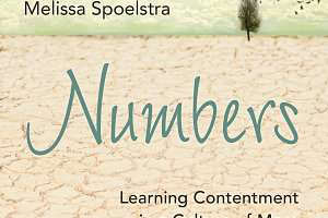 Experience the Numbers Bible Study