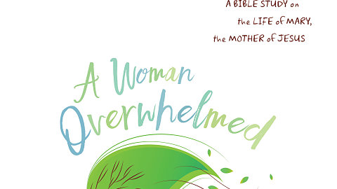 A Woman Overwhelmed Now Available!